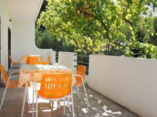 2 bedroom Condo with Television in Brela - Brela vacation rentals