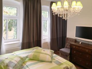 Stylish apartment with great location - Erfurt vacation rentals