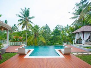 Villa Kolibri Saudara 2 Bed Luxury! - Ubud vacation rentals