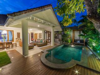 Private Villa -Private Pool -BBQ -Free FIBER Wifi at Seminyak Side - Denpasar vacation rentals