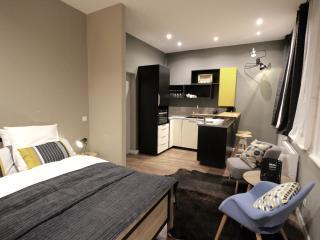 Schindler Rentals - ARTSY- - Lille vacation rentals
