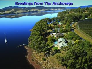 The Anchorage Waterfront Apartment - Castle Forbes Bay vacation rentals
