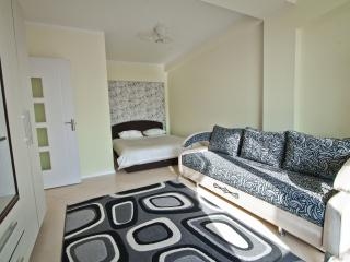Comfortable 1-room apartment in the center - Chisinau vacation rentals