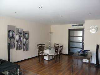 Magnifique Appartement 110m2 -centre-zone piétonne - Castellon de la Plana vacation rentals