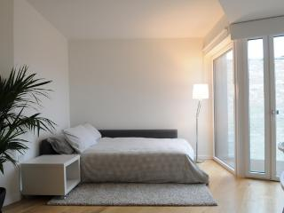 Luxurious Studio 6 mins from Camden Town - London vacation rentals