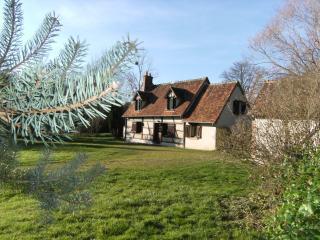 Locature du Four en Sologne/Chateaux de la Loire Gite **** - Mur-de-Sologne vacation rentals