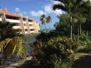 Latitude Adjustment on the Beach FREE WIFI - Christiansted vacation rentals