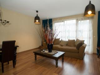 Luxury 3 BR Arena District - Amsterdam vacation rentals