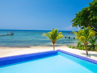 PRIVATE BEACH - HUGE INFINITY POOL - STUNNING REEF - Antoneys Cay vacation rentals