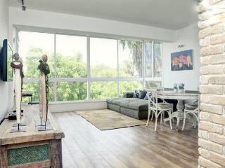 Designed modern  2 master bedrooms - Tel Aviv vacation rentals
