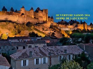 Le Pavillon de la Cité et son jardin (appart.F2) - Carcassonne vacation rentals