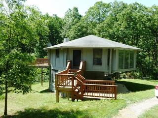 2 bedroom House with Wireless Internet in Bentonville - Bentonville vacation rentals