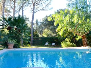 STYLISH FAMILY VILLA WITH POOL IN MONTPELLIER - Castelnau-le-Lez vacation rentals