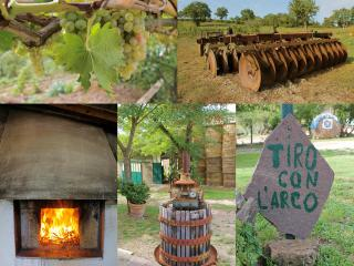 A Lovely Ancient Farmhouse In The Heart Of Tuscany - Scansano vacation rentals