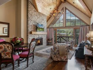 Mountain View Vail Village - Vail vacation rentals