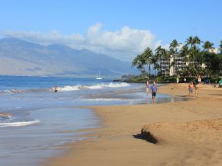 Beautiful Maui Home Away From Home - Kihei vacation rentals