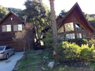FANTASTIC CHALET  NORTH LOS ANGELES - Castaic vacation rentals
