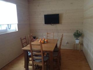 Nice House with Internet Access and Trampoline - Zelenograd vacation rentals