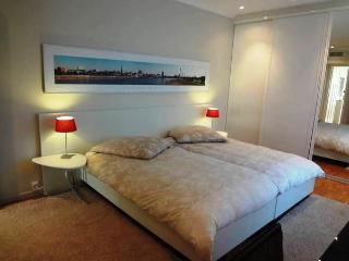 Cannes - contemporary apartment at 300 m from the beach - Cannes vacation rentals