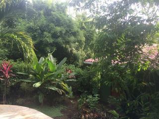 Montezuma Beach tree top studio - Montezuma vacation rentals