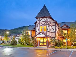 Boyne Mountain Condo - Boyne Falls vacation rentals