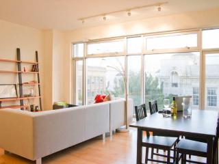 Modern Luxury Downtown Apartment - San Francisco vacation rentals