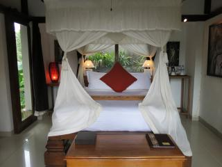 Rustic Luxury Two Bed Room : Ananda & Ananda Sri - Sayan vacation rentals