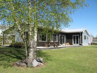 Carmel Cottage - Turangi vacation rentals