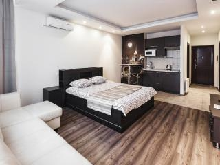 Nice and warm flat with panoramic windows Lev T - Chisinau vacation rentals