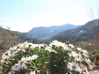 Great valley views in a rustic house - Valldemossa vacation rentals
