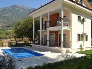 Dream Villa A - 4 bedroom Villa with private pool - Ovacik vacation rentals