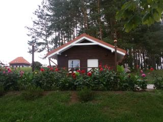 Cosy cabin by the lake with sauna - Svedasai vacation rentals