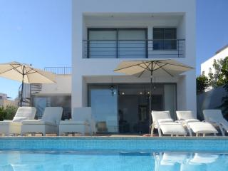 Cyprus In The Sun Villa PaLa 1 Platinum - Latchi vacation rentals