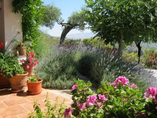 Spacious Country Villa with Pool - Alora vacation rentals