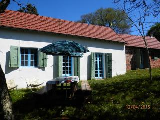 Quirky restored cottage in the Dordogne - Terrasson-Lavilledieu vacation rentals