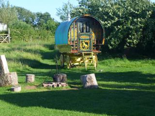 Gypsy Caravan Holiday Breaks, In Rural Somerset - Compton Dundon vacation rentals