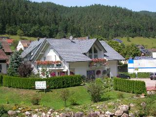 Vacation Apartment in Hornberg (# 7959) ~ RA64223 - Hornberg vacation rentals