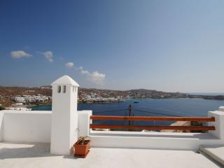 Beautiful House with Internet Access and A/C - Mykonos Town vacation rentals