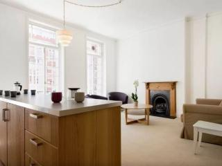 Modern & Bright Flat in London - London vacation rentals