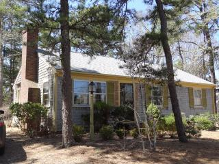 Lovely House with Internet Access and A/C - Brewster vacation rentals