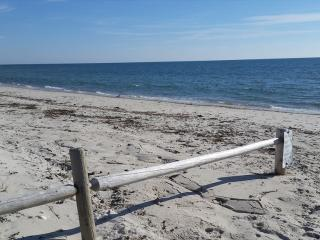 BY THE SEA IS WHERE YOU WANT TO BE!! DOG FRIENDLY 129982 - West Dennis vacation rentals