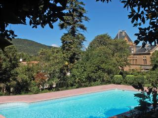 Chateau Terre Blanche Chalabre - Chalabre vacation rentals