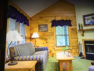 Vacation cabin - Gordonsville vacation rentals