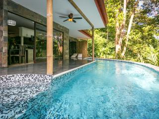 Exotic Casa Aracari, the perfect 2 BR jungle home! - Manuel Antonio National Park vacation rentals