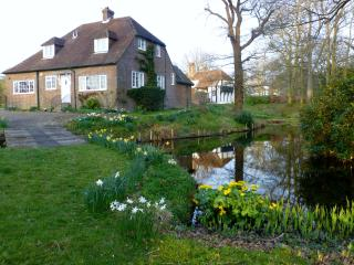 Pretty cottage, fabulous rural location, Sussex - High Hurstwood vacation rentals