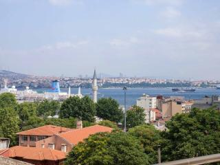 1 BED Penthouse with Sea and Tower View in Galata - Istanbul vacation rentals