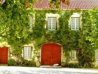 Quinta da Alcaidaria-Mor - Infanta - Ourem vacation rentals