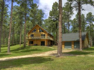 Bright 3 bedroom Cabin in Deadwood with Internet Access - Deadwood vacation rentals
