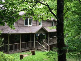 Devi YaYa House sleeps up to 18-24 - Boone vacation rentals