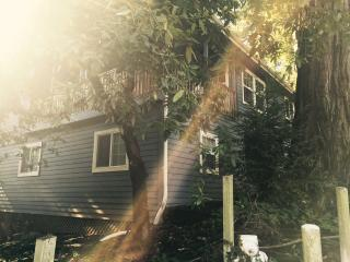 The G Spot - Guerneville vacation rentals